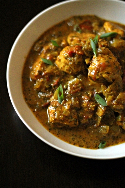 Indian-Tomato-Cilantro-Chicken-0002