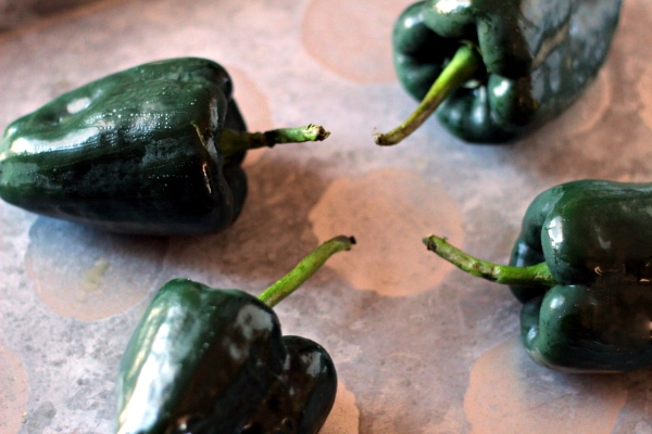 This Roasted Poblano Peppers in Cream Sauce recipe is delicious by itself, but is a total hit alongside Refried Beans and maybe just throw a fried egg on top for a breakfast. It is also great with cooked chicken breast slices added to this sauce for a Chicken with Poblano Cream Sauce recipe!