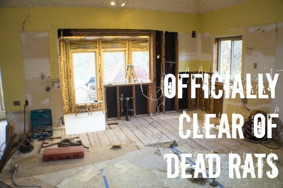 Planning a renovation? Completing your own home remodel demolition can save you a boatload of money, but isn't for the faint of heart. Put on some grubby clothes, pull on your gloves, and let's get to work! Kitchen demolition included!