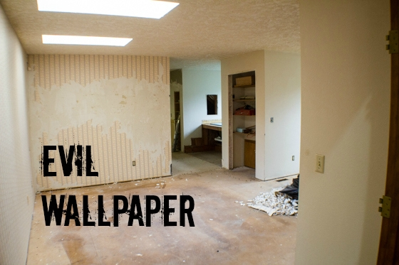7 lessons i learned during our home remodel demolition the completing your own demolition can save you a boatload of money solutioingenieria Images