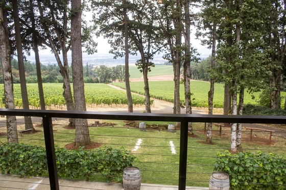 Yamhill County - Oregon's Wine Country