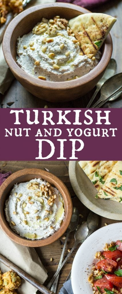 This thick and creamy Turkish Nut and Yogurt Dip recipe is chock full of ground nuts and bold flavor. Perfect with toasted pita chips, spread onto sandwiches, or as part of a gourmet veggie platter!