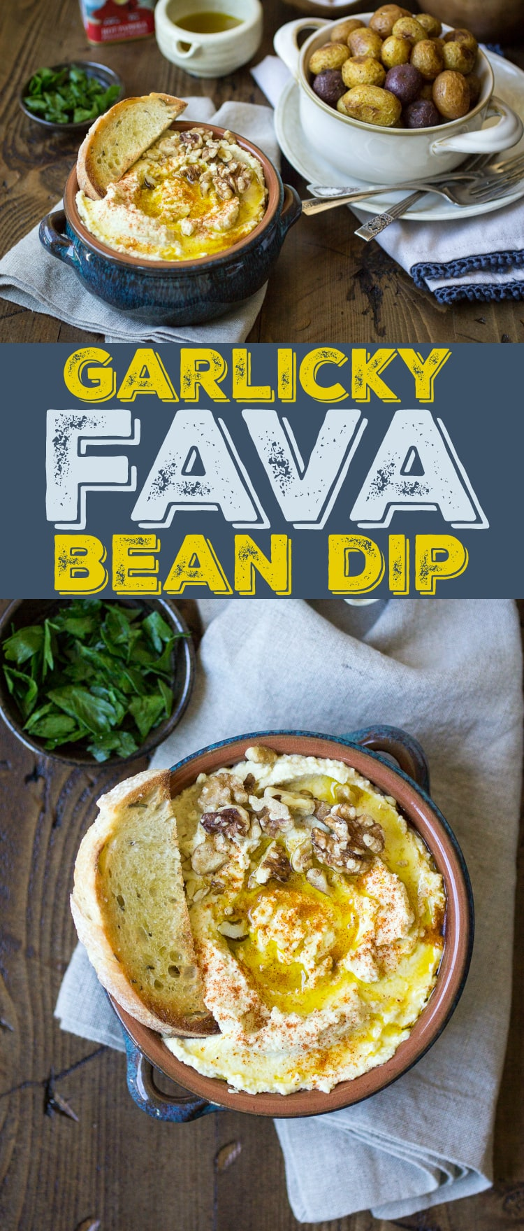 This easy Fava Bean Dip is creamy and full of rich flavor! Perfect for any party, or spread onto sandwiches or pita bread.
