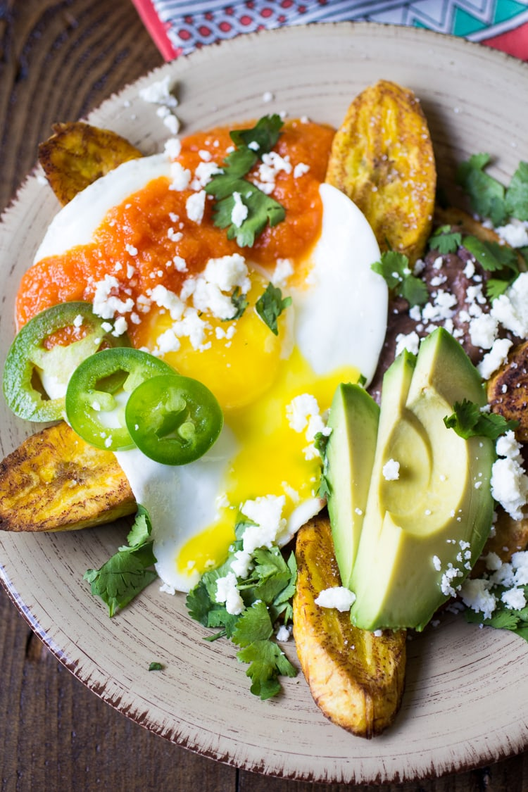 Huevos Motuleños, or Yucatan-style eggs, is a delectable breakfast dish of a fried tortilla topped with black beans, a sunny-side-up egg, red sauce, and golden fried plantains. Garnish it however you like (but I like it with avocado, pickled jalapeños, and cilantro!).
