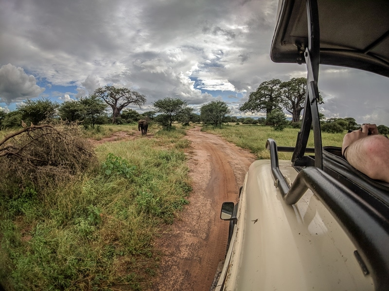 First Timer's Guide to Camping in the Serengeti