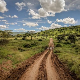 The First Timer's Guide to Camping in the Serengeti