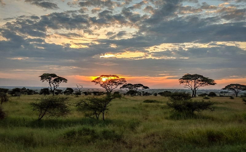 Sunset in the Serengeti | First Timer's Guide to Camping in the Serengeti
