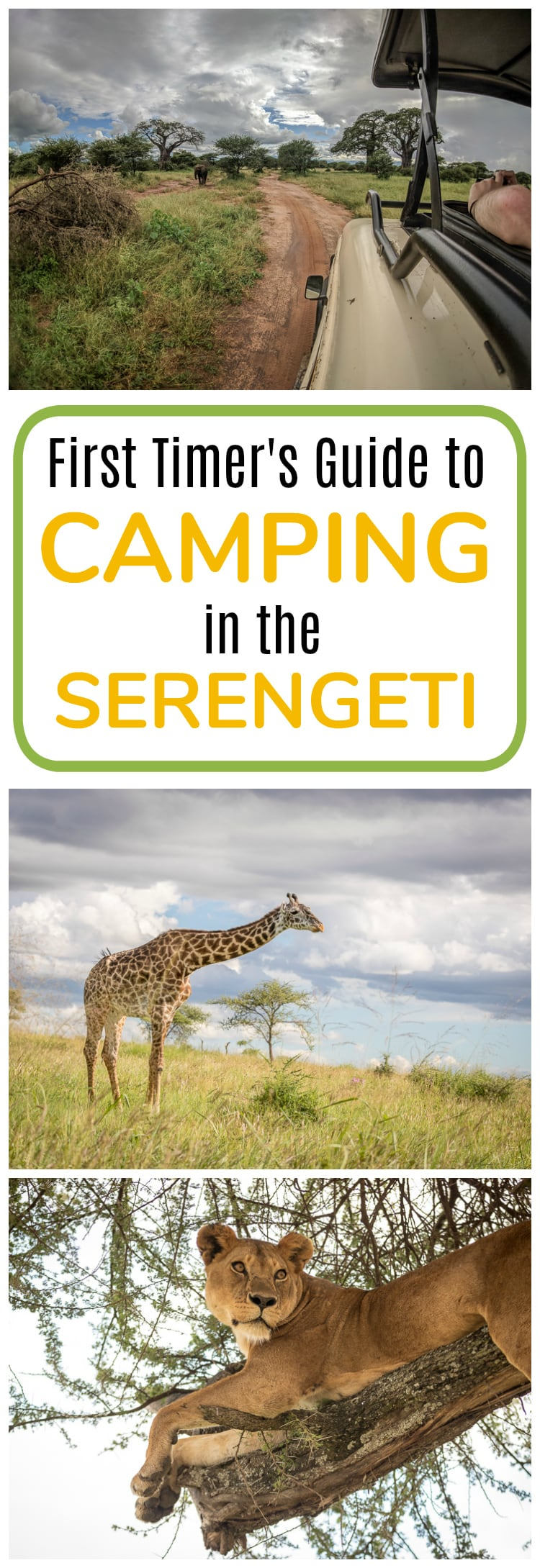 Everything you need to know before your first time CAMPING in the SERENGETI!