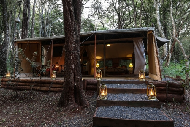 Glamping on African Safari - How to Choose Between GLAMPING and CAMPING for your African Safari