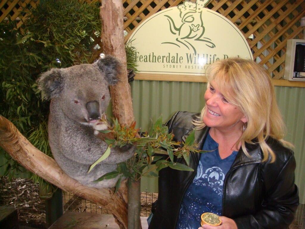 Petting a koala in Sydney, Australia