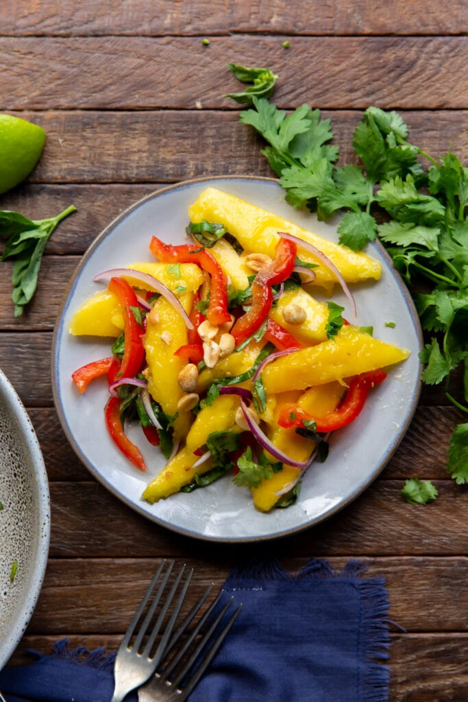 Wanting a mango salad recipes. Here is one! This Mango Salad recipe has sweet mangoes, crisp bell peppers and onions, and a tangy lime dressing that all pairs together perfectly!